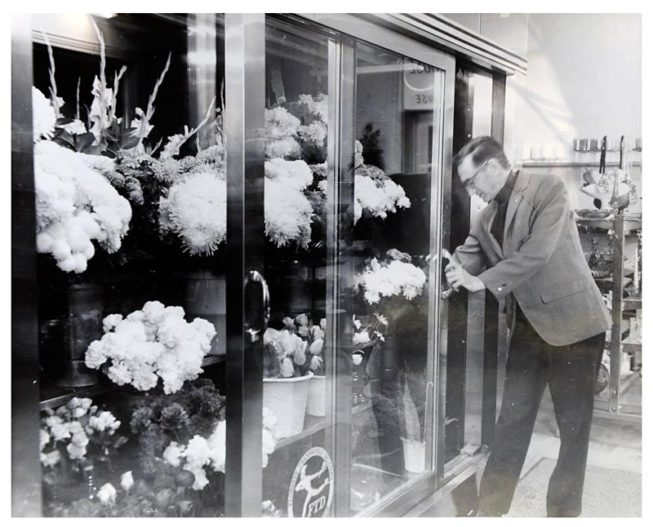 Frank White at his floral shop, before he retired and took up model boat-making. Date and photographer unknown.