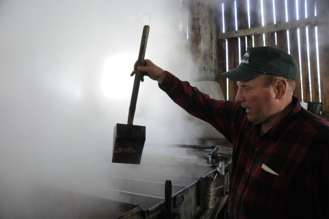Checking the consistency of the sap being boiled into syrup in the evaporator, 2010.