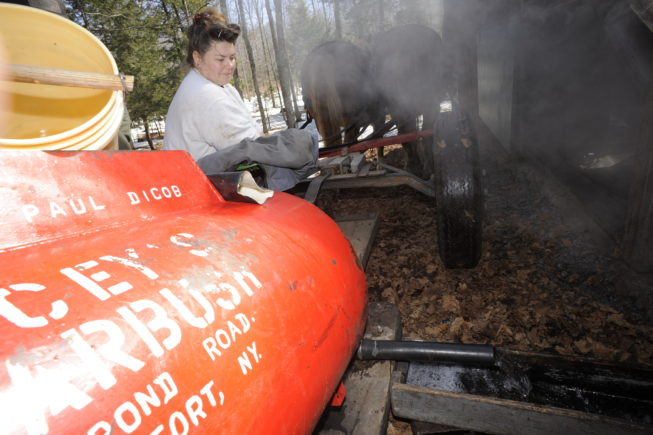 Delivering sap to the boiling shed, 2010.