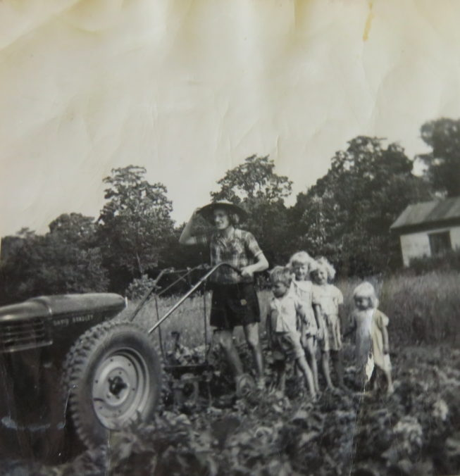 Loretta's mother Vicki, a great gardener, works the old garden cultivator at the family farm where Loretta grew up near Constableville, NY, with Loretta's older siblings in tow. Photographer and date unknown. Courtesy of Loretta Lepkowski.
